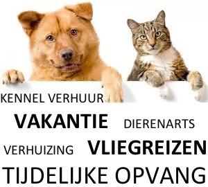 kennel-huren-verhuur-hond-kat-huisdier-vakantie-reis-vliegreis-klm-martinair-tui-arke-emirates